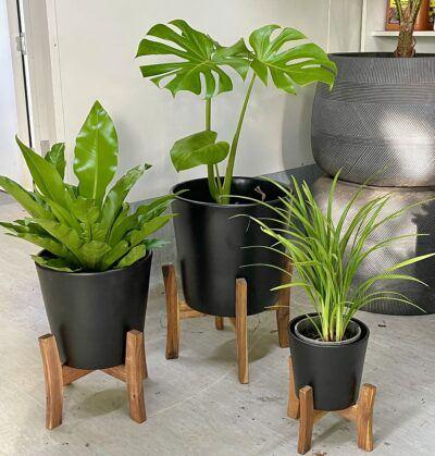 Jayda Plant Stand Black