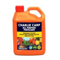 Charlie Carp