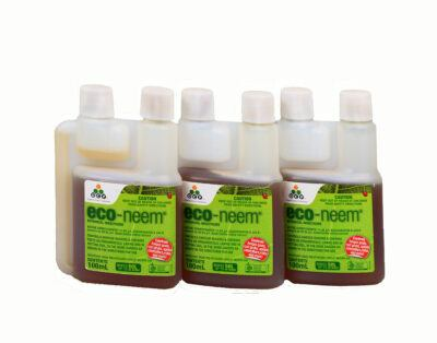 Eco-neem insecticide