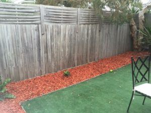 A before shot of a Tropical Backyards makeover