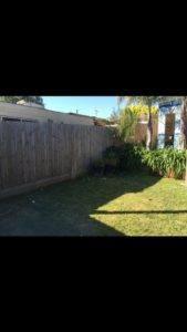 Before shot of a garden - Tropical Backyards makeover